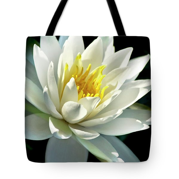 Tote Bag featuring the photograph Water Lily by Christina Rollo