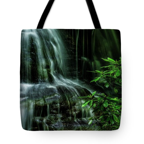 Waterfall And Rhododendron, Light And Shadow Tote Bag