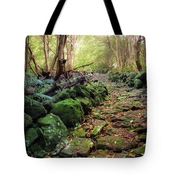 Waterfall Path Tote Bag