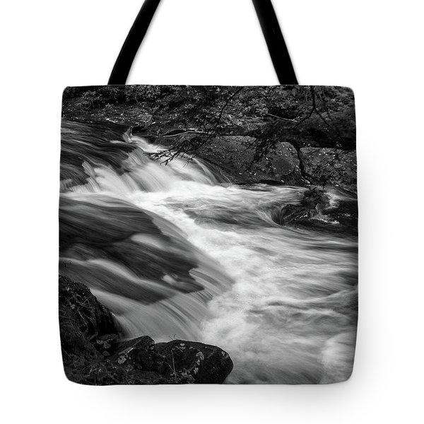 Waterfalls At Ricketts Glenn Tote Bag