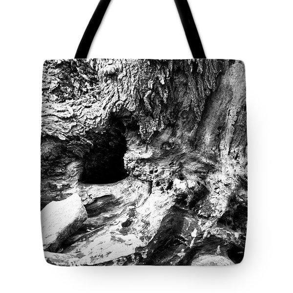 Weathered Stump Tote Bag