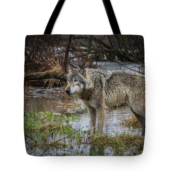 Wet Feet Tote Bag