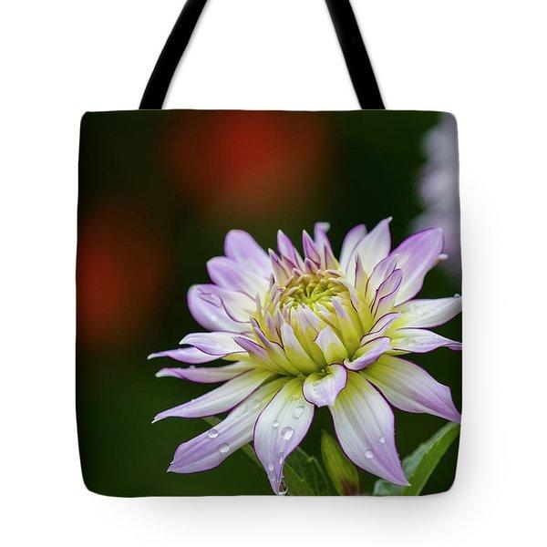 Wet Petals Dahlia Tote Bag