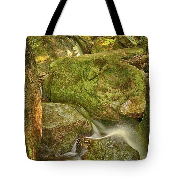 Wet Rocks Tote Bag