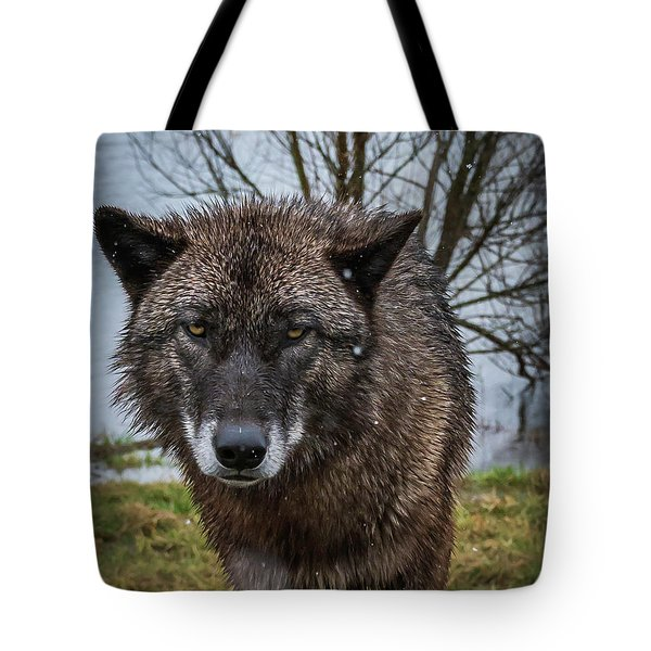Wet Wolf Tote Bag