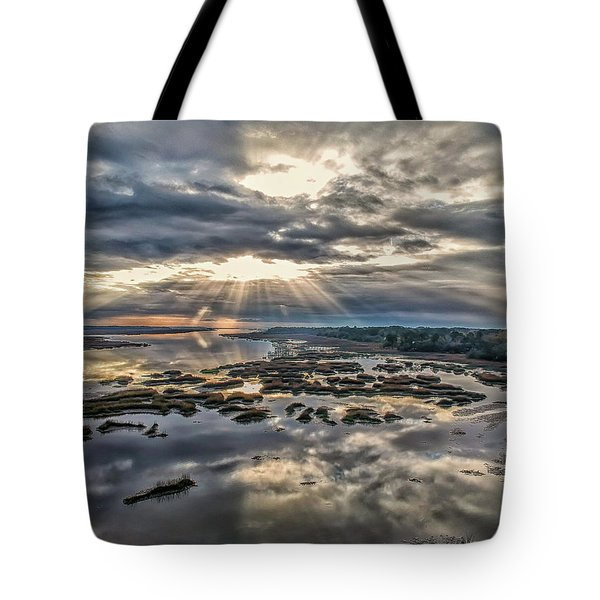 Whale Branch - Angel Rays Tote Bag
