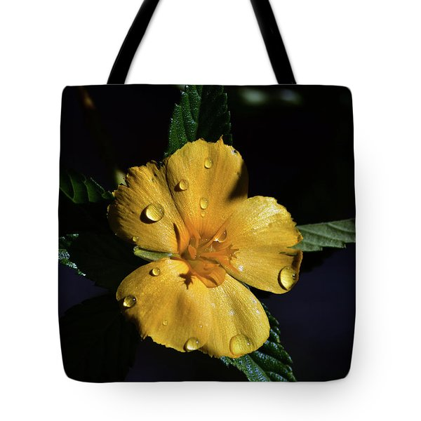 What Dew Will Do Tote Bag