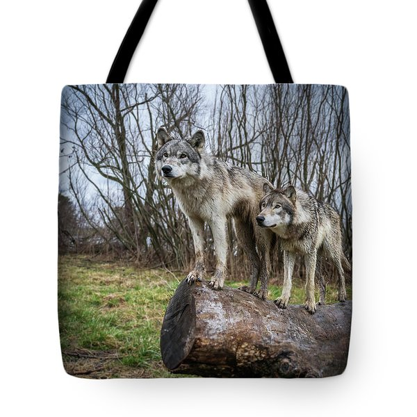 What Ya Looking At Tote Bag