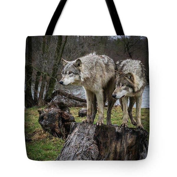 What Ya Think Tote Bag