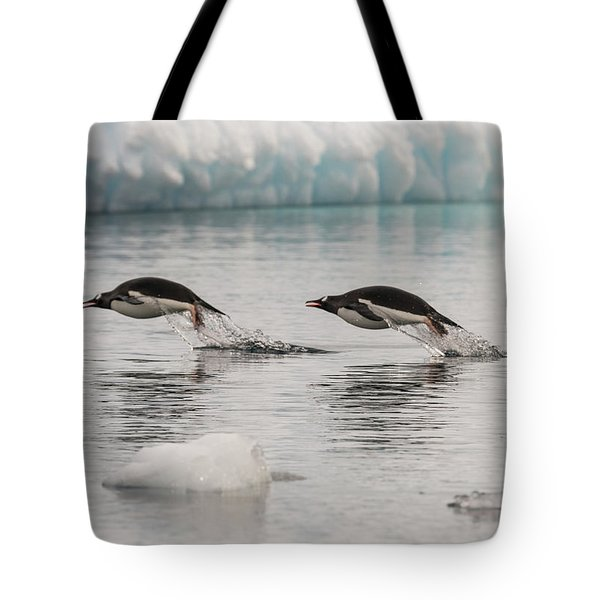 When Penguins Fly Tote Bag
