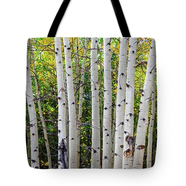 Tote Bag featuring the photograph White Bark Golden Forest by James BO Insogna