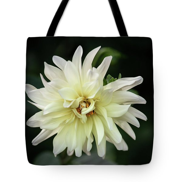 Tote Bag featuring the photograph White Dahlia Beauty by Dale Kincaid