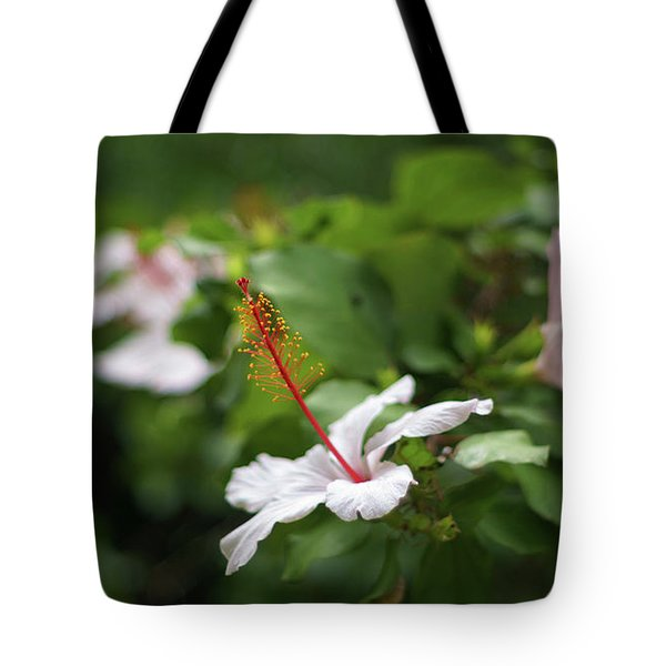 Tote Bag featuring the photograph White Hibiscus Flower by Pablo Avanzini
