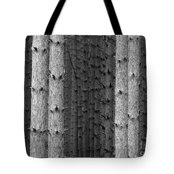 White Pines Black And White Tote Bag