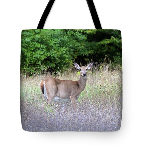 White Tale Deer Tote Bag