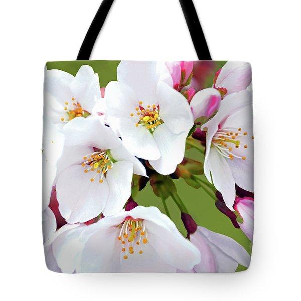 White Yoshino Cherry Blossoms 19-1 Tote Bag