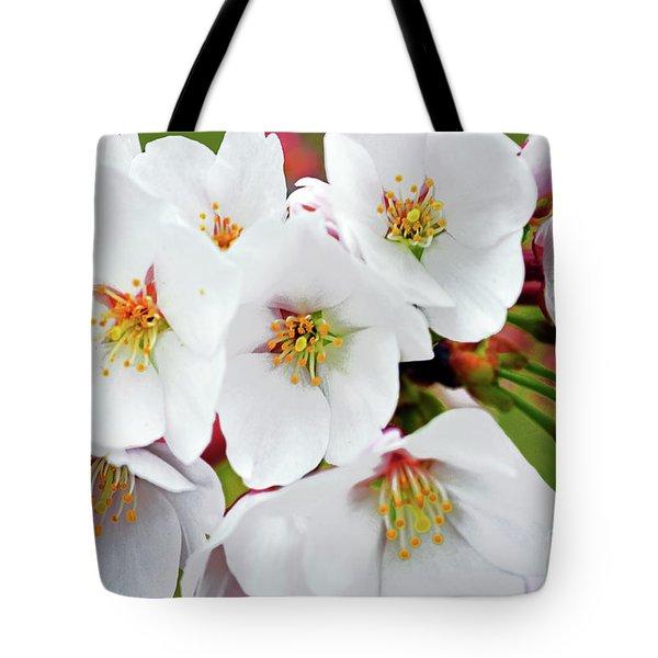White Yoshino Cherry Blossoms 19-2 Tote Bag