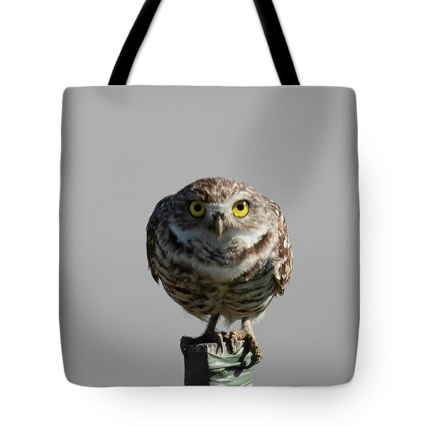Tote Bag featuring the photograph Whooo Are You by Sally Sperry