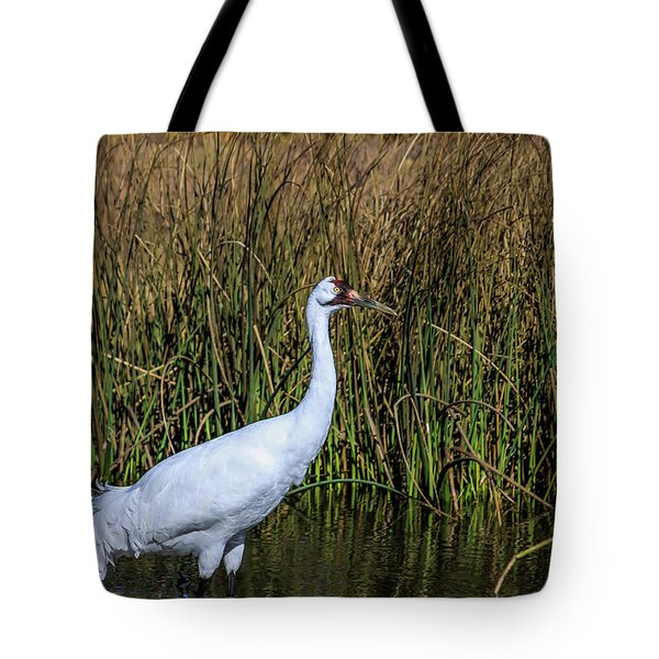 Whooping Crane In Pond Tote Bag