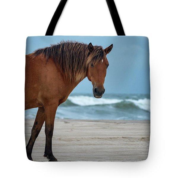 Wild Colonial Spanish Mustang Of Carova Stormy Skies Tote Bag