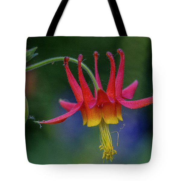 Tote Bag featuring the photograph Wild Columbine by Matthew Irvin