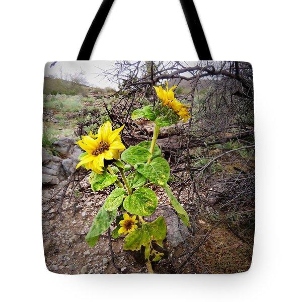 Wild Desert Sunflower Tote Bag