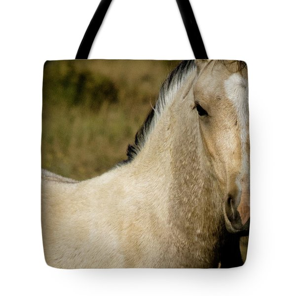 Wild Mustangs Of New Mexico 5 Tote Bag