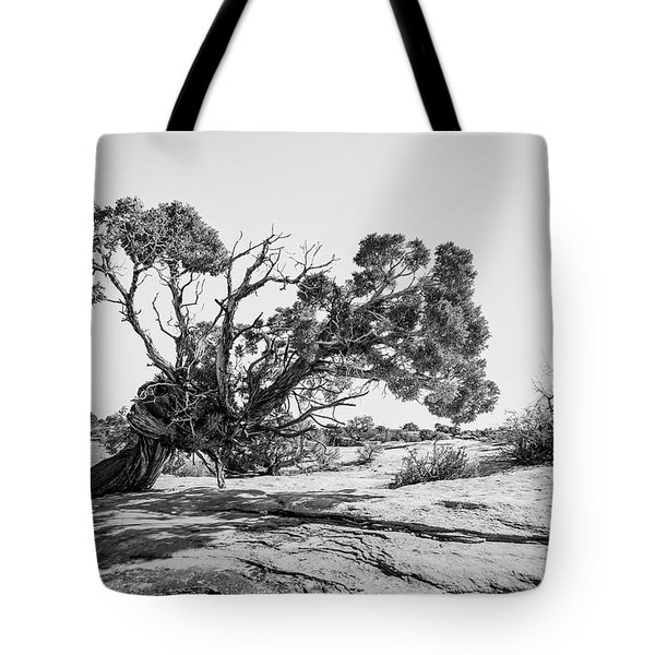 Tote Bag featuring the photograph Will To Survive by Andy Crawford