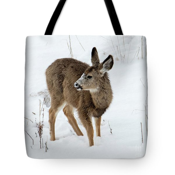 Winter Bambi Tote Bag