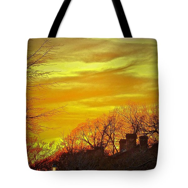 Tote Bag featuring the photograph Winter Gold by Don Moore