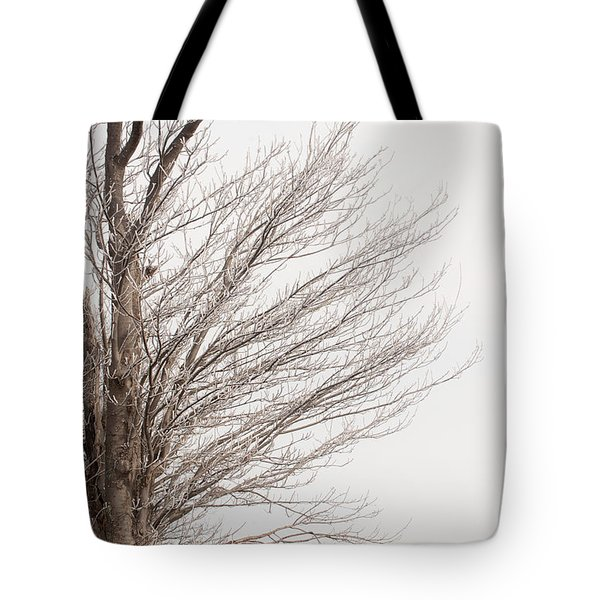 Winter Hoarfrost Tote Bag