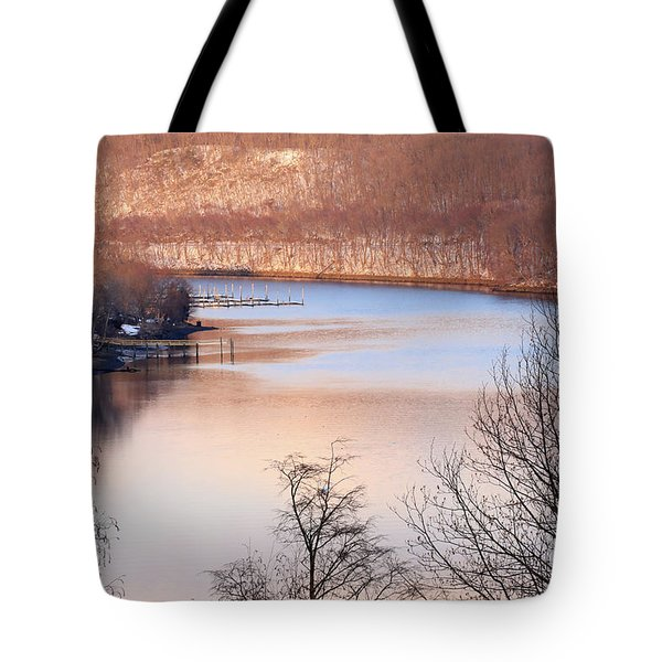 Winter In Pink And Blue Tote Bag