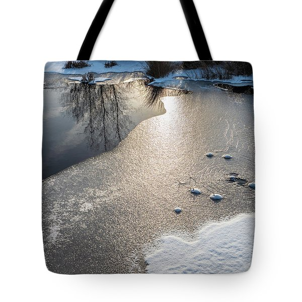 Tote Bag featuring the photograph Winter Landscape At Whitesbog by Louis Dallara