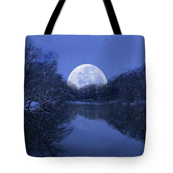 Winter Night On The Pond Tote Bag