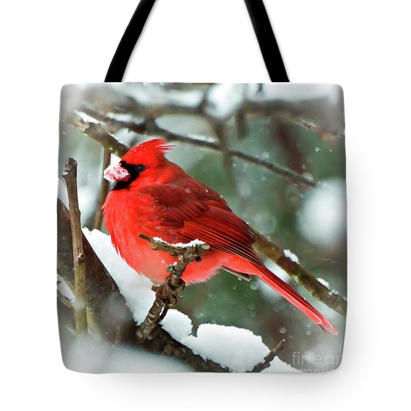 Winter Red Bird - Male Northern Cardinal With A Snow Beak Tote Bag