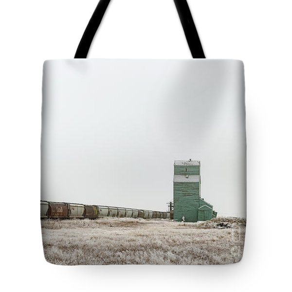 Tote Bag featuring the photograph Winter Sentinel by Brad Allen Fine Art