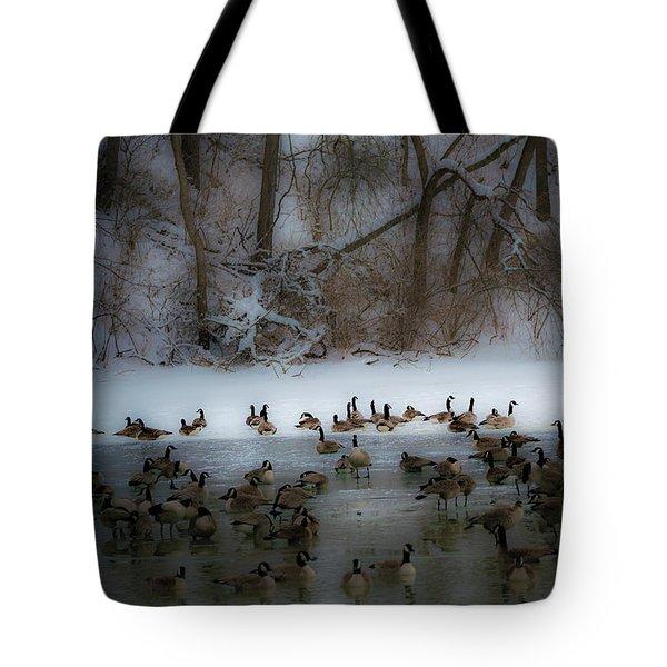 Winter Swim Tote Bag