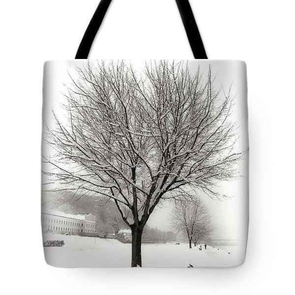 Winter Trees Along The Danube At Ybbs Tote Bag
