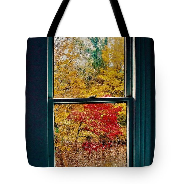 Tote Bag featuring the photograph Winter Window by Randy Sylvia