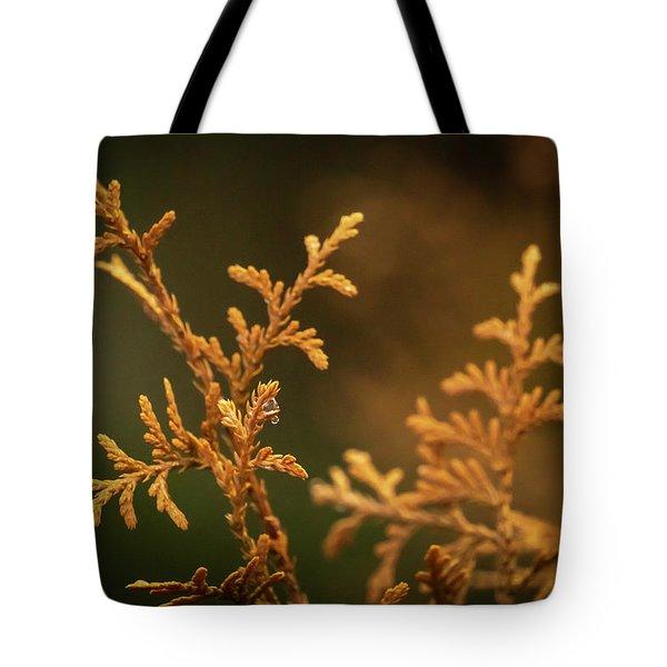 Winter's Hedges Tote Bag