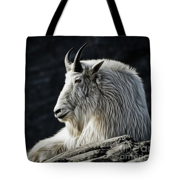 Tote Bag featuring the photograph Wisdom From Up High by Brad Allen Fine Art