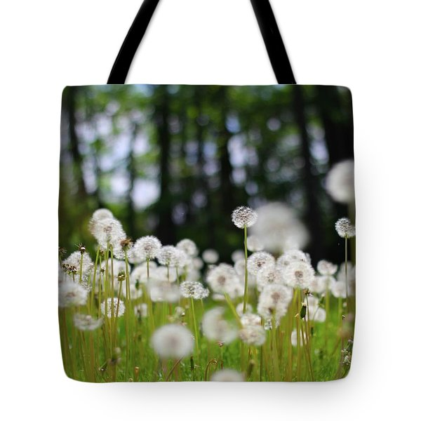 Wishes And Dreams Tote Bag