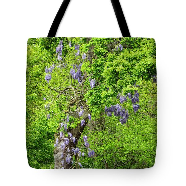 Wisteria And Oak Tote Bag