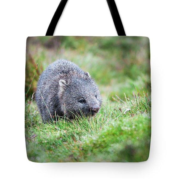 Tote Bag featuring the photograph Wombat Outside During The Day. by Rob D Imagery
