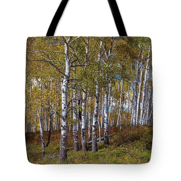 Tote Bag featuring the photograph Wonders Of The Wilderness by James BO Insogna