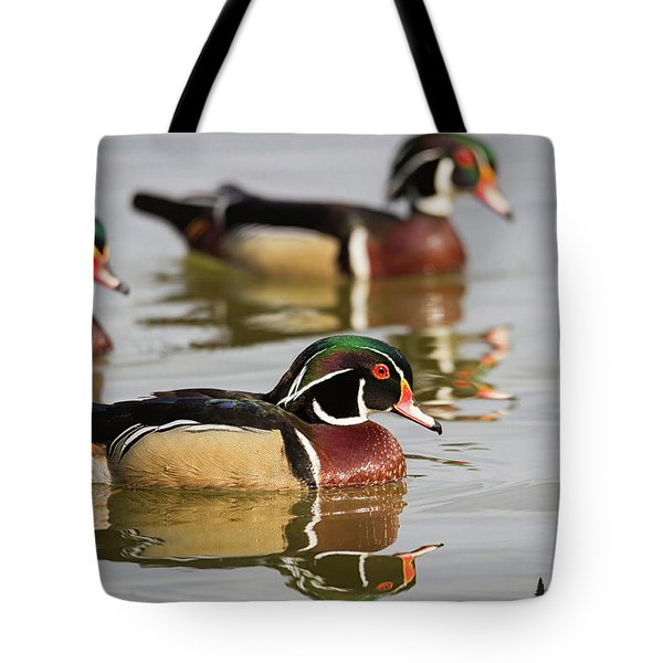 Wood Duck Threesome Tote Bag