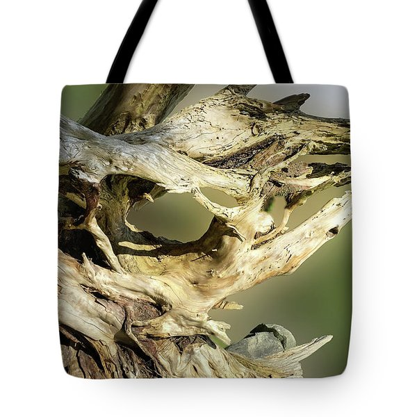 Tote Bag featuring the photograph Wood Log In Nature No.14 by Juan Contreras