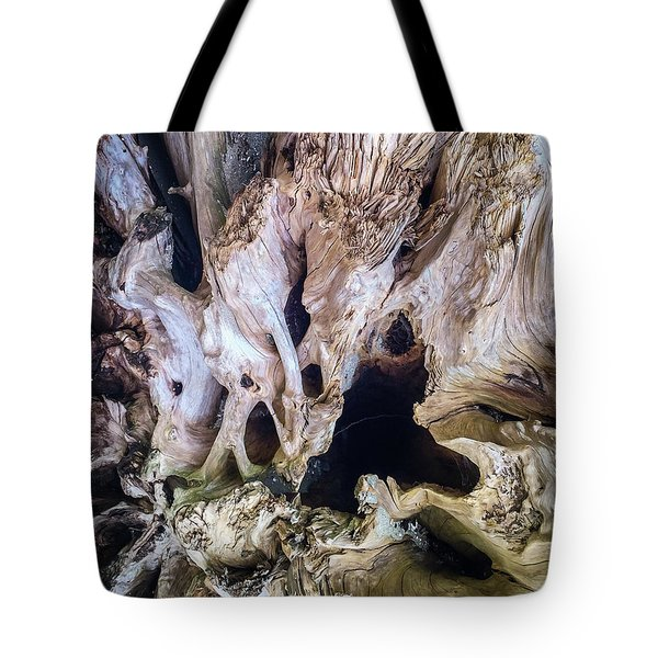 Tote Bag featuring the photograph Wood Log In Nature No.21 by Juan Contreras