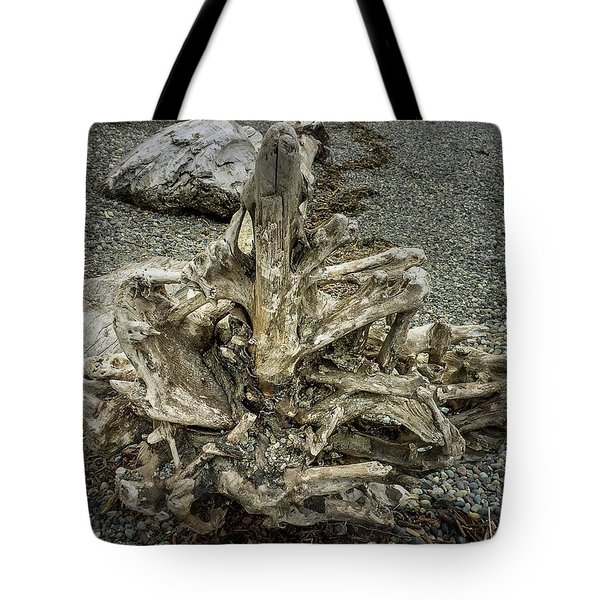 Tote Bag featuring the photograph Wood Log In Nature No.36 by Juan Contreras