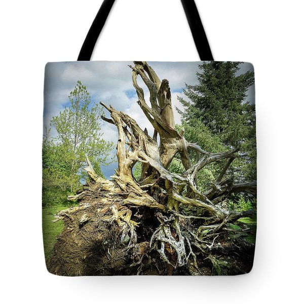 Tote Bag featuring the photograph Wood Log In Nature No.6  by Juan Contreras